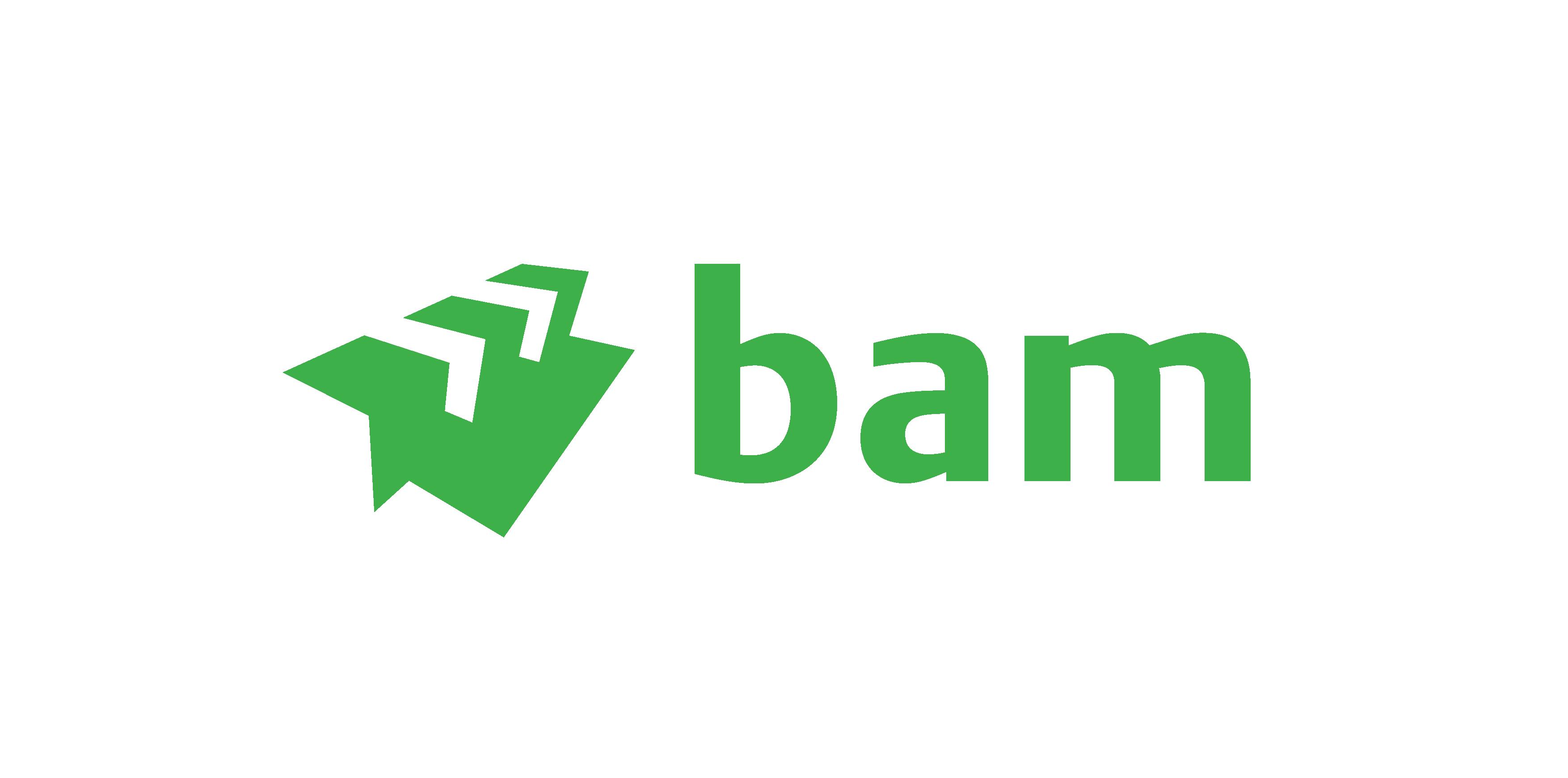 https://www.masterpartys.nl/app/uploads/2020/06/Bam-logo.png